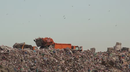 wasteful : Rear loader garbage truck on landfill, environment issue and nature pollution concept.