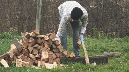 woodcut : Lumberjack cutting wood logs with axe, man splitting firewood for winter season. Stock Footage