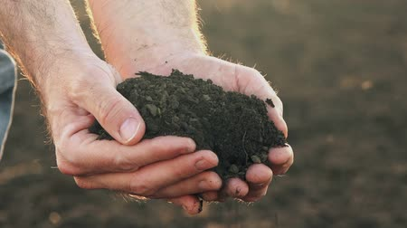 çiftçi : Farmer handful of fertile soil standing in cultivated field Stok Video