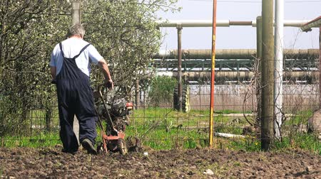 tiller : Old gray hair caucasian farmer working with cultivator tiller in garden