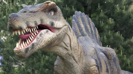 jura : NOVI SAD, SERBIA - APRIL 28, 2016: Spinosaurus life-size model of prehistoric animal in theme entertainment park. Spinosaurus was among the largest carnivorous dinosaurs.