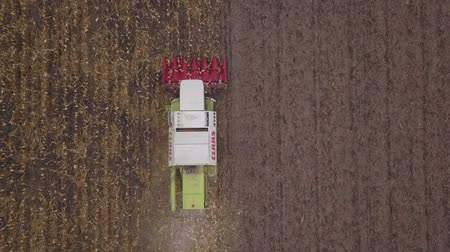 sérvia : ZRENJANIN, SERBIA - SEPTEMBER 19, 2017: Aerial view of Claas combine harvester working on corn field, drone pov. Lower maize crop yield expected this year in Vojvodina due to drought during summer. Vídeos