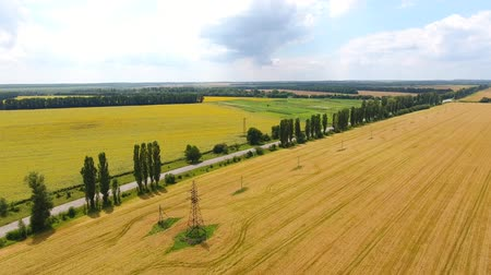 panoramic view from the air to the fields and meadows