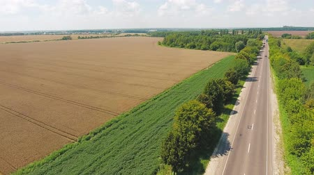 flight over the field of yellow wheat and road. Aerial view