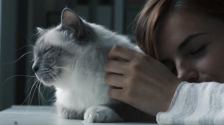 amado : Young woman cuddling her beautiful birman cat lying on the table, pets and lifestyle concept