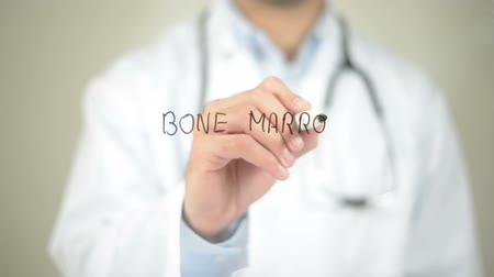 erythrocyte : Bone Marrow , Doctor writing on transparent screen Stock Footage