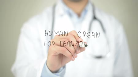 adomány : Human Organ For Transplant , Doctor writing on transparent screen Stock mozgókép