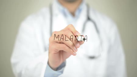 komar : Malaria, Doctor writing on transparent screen