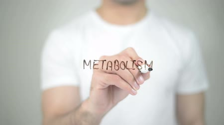 labeled : Metabolism, man writing on transparent screen