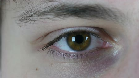 eye ball : Blinking Eye of Young Man, Close Up