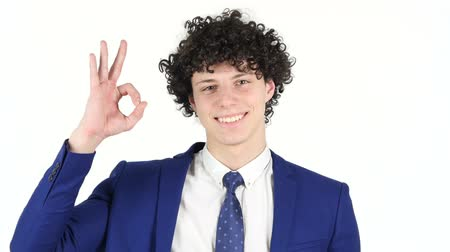 ludzik : Okay Sign by Young Businessman, White Background