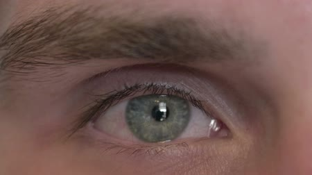 oczy : Close Up of Eye of Young Man Looking at Camera Wideo
