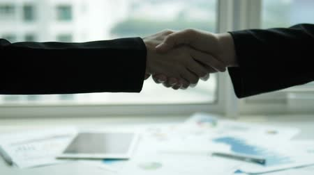 meeting negotiate : Businesswoman shaking hands