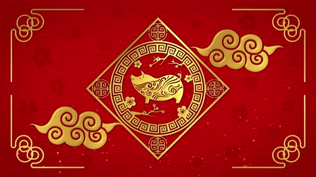 piglet : Chinese new year 2019 with golden pig zodiac on red background looped. Stock Footage