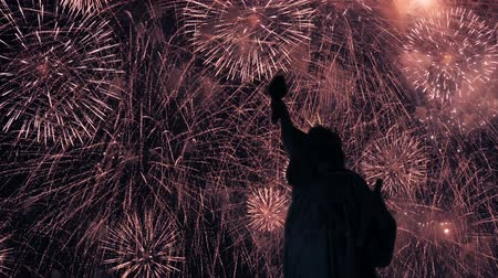 capitalism : Independence fireworks with liberty statue in New York City. Stock Footage