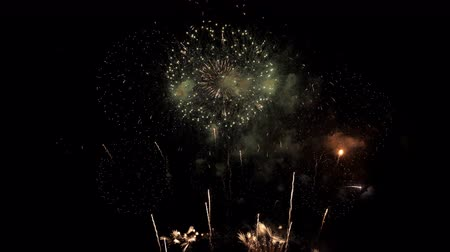 biesiada : Beautiful colorful fireworks on celebration day.
