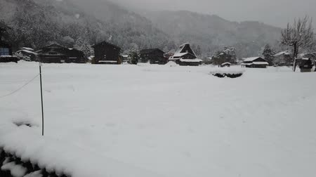Snow falling in Shirakawago village world heritage, Japan.