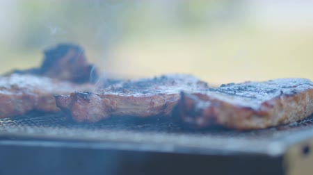 BBQ beef on the grill with smoke, outdoor. Stok Video