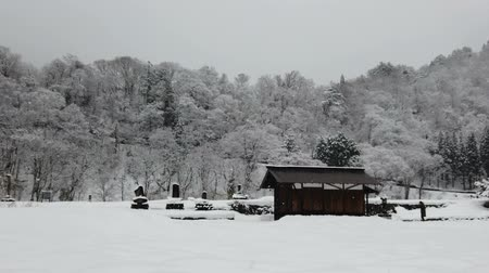 Winter countryside with falling snow, old cabin and tree on mountain.