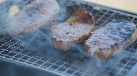 fireplace : Pork steaks on the grill with fire and smoke Stock Footage