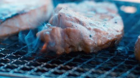 Pork meat on the grill. Stok Video