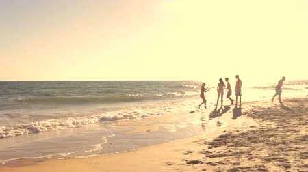 друзья : Long shot taken at evening of a group of teenage friends talking and playing in the surf. Стоковые видеозаписи