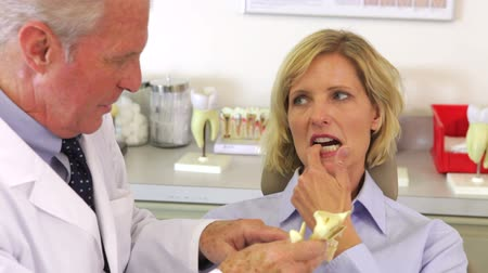 dentysta : Dentist showing female patient model of human jaw and discussing dental problems.