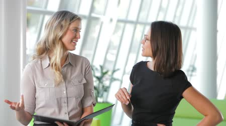 испанец : Two businesswoman in modern office discussing report together.