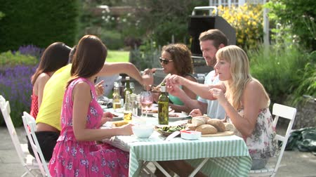 people talking : Group Of Friends Having Outdoor Barbeque At Home Stock Footage