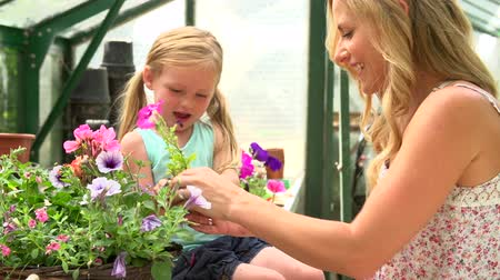 helping : Mother And Daughter Growing Plants In Greenhouse