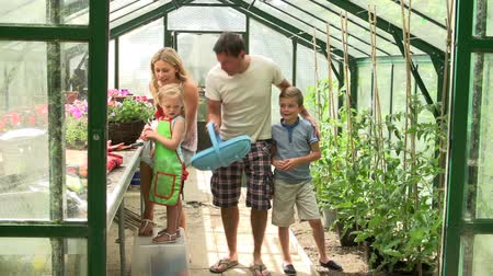 self sufficiency : Family Working Together In Greenhouse Stock Footage