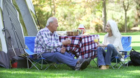 elliler : Senior Couple Enjoying Camping Holiday In Countryside Stok Video