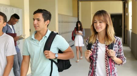 aluno : Group Of High School Students Walking Along Hallway