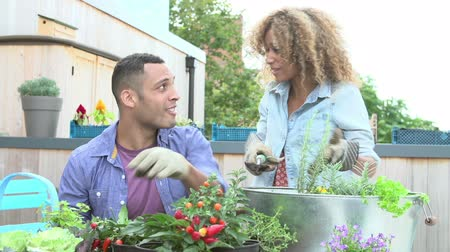 self sufficiency : Couple Planting Rooftop Garden Together