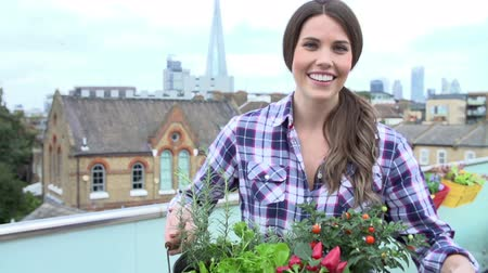 self sufficiency : Woman Holding Container Of Plants On Rooftop Garden Stock Footage