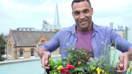 self sufficiency : Man Holding Container Of Plants On Rooftop Garden
