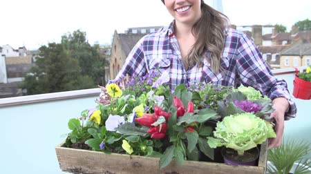 self sufficiency : Woman Holding Tray Of Plants On Rooftop Garden