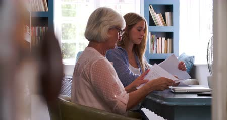 helping : Daughter Helping Senior Mother With Paperwork In Home Office