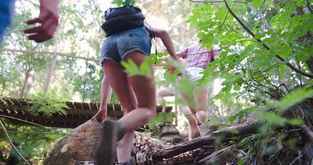 outdoor : Low angle view of group walking in forest, crossing a bridge Stock Footage