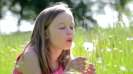 dmuchawiec : Girl Sitting In Summer Field Blowing Dandelion Flower Wideo
