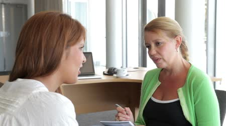 counselling : Woman Talking To Female Counsellor In Office