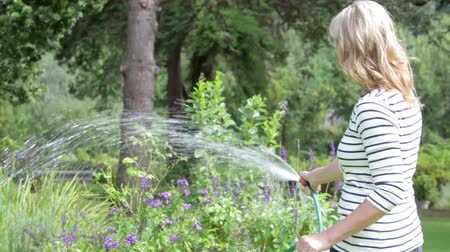 půvabný : Middle Aged Woman Watering Garden With Hosepipe
