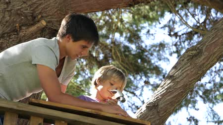 родной брат : Teenage Boy Helps Younger Brother To Build A Tree House Стоковые видеозаписи