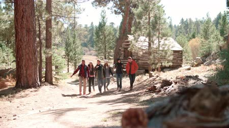 ature : Six friends walk past log cabin in a forest towards camera