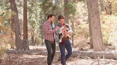 sexo : Male couple in forest with baby in sling walk towards camera Vídeos