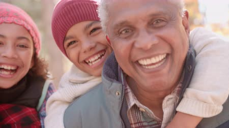 aydınlatmalı : Smiling African American grandparents with grandchildren, close up Stok Video
