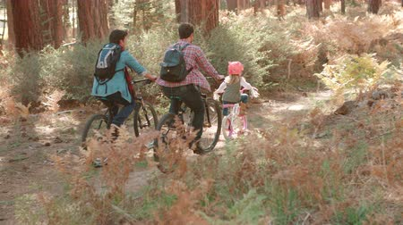 sexo : Male couple and daughter in a forest cycle past, back view
