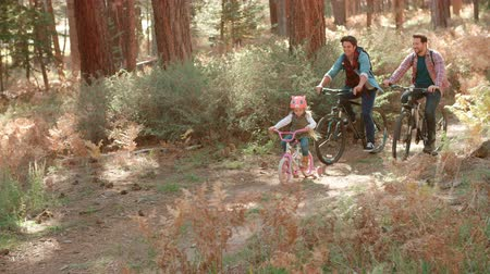 sexo : Proud male parents and young daughter cycle past in forest Vídeos