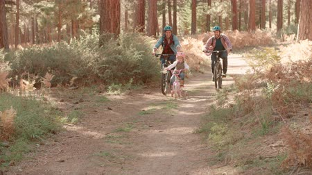 sexo : Male couple cycling with daughter in forest, front view, shot on R3D