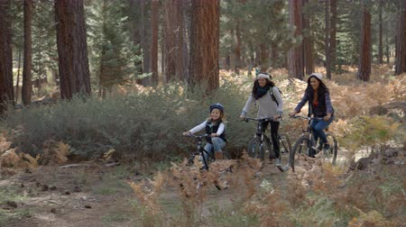 sexo : Lesbian couple cycling in a forest with their daughter